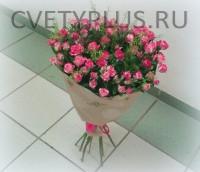 Розы куст. сорт Фаер воркс с зеленью Талапси Грин Белл--2650 р.