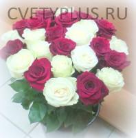 25 роз белые и бордовые-3775 р.