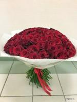 101 роза супер премиум высокая 18500 р.