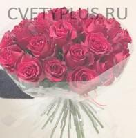 Розы Эксплорер - 5250 р.