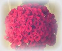 101 роза-13350 руб