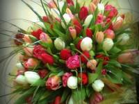 100 тюльпанов -от 8000 р.